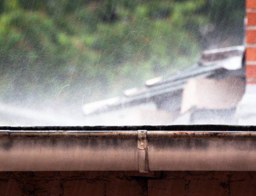 Blogindlæg: Klima, byggeri og præstationsangst